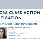 Amy E. Tabor FCRA Class Action Litigation CLE Presentation